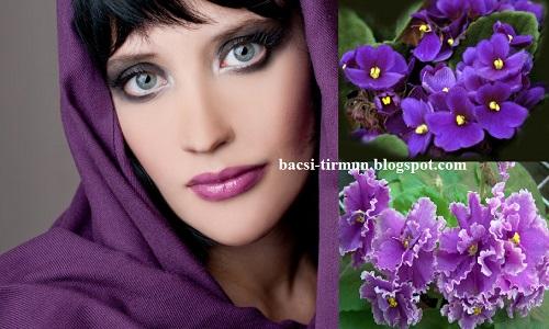 Trị mụn bọc hiệu quả bằng hoa violet